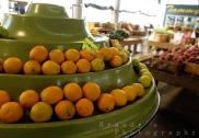orangesgalor
